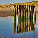 Reflections on the beach 5 by Adri  Padmos