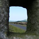 through the key hole - North Yorkshire Moors by monkeyferret