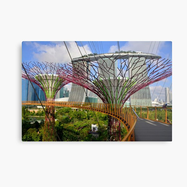 Gardens by the Bay, Singapore Metal Print