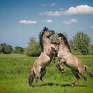 It takes two to tango by Henri Ton