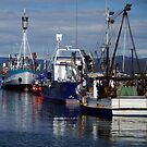 Fishing Boats, Eden by Alison Howson