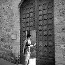 door in a door by stickelsimages