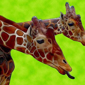 Giraffe  by kjhart8