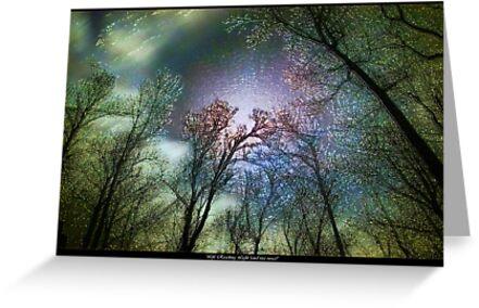 Life Reaching Light (and Vice Versa) by Daniel Brown
