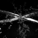 X Marks The Spot by WickedJuggalo
