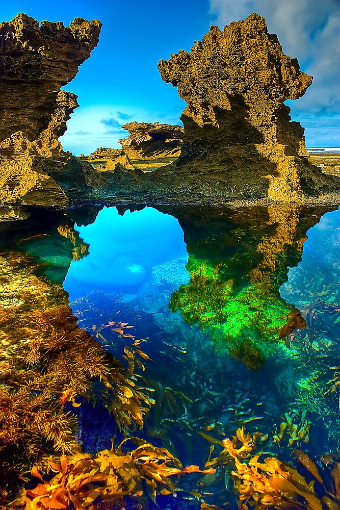 Quot Morning At Sorrento Back Beach Quot By Jason Green Redbubble