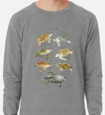 Sea Turtles Lightweight Sweatshirt