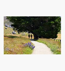 Walking To Castle Hill Photographic Print