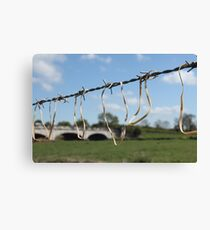 Affected Nature Canvas Print