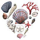 « Coeur de l'océan » par Catherine Plante