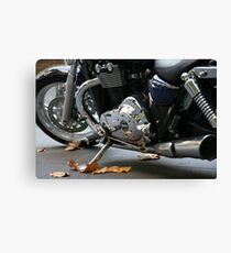 98 Cubic Inches Canvas Print