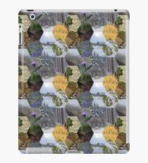 Glimpses of the Slieve Bloom 2 iPad Case/Skin