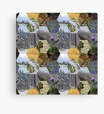 Glimpses of the Slieve Bloom 2 Canvas Print