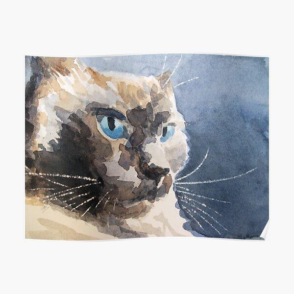 Ari, a cat Poster