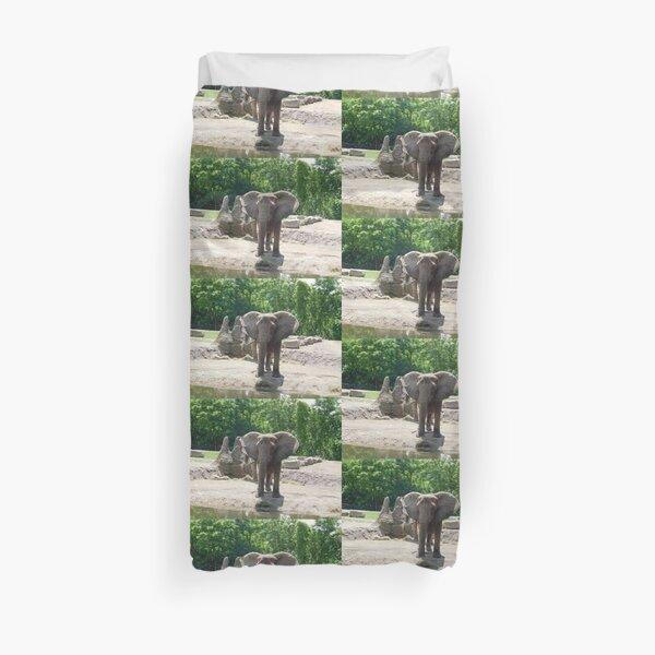 Elephant photograph 110  Duvet Cover