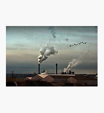 Air pur Photographic Print