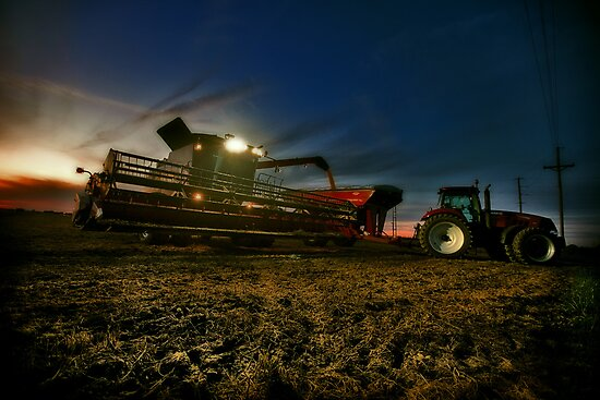 Night Harvest by Steve Baird