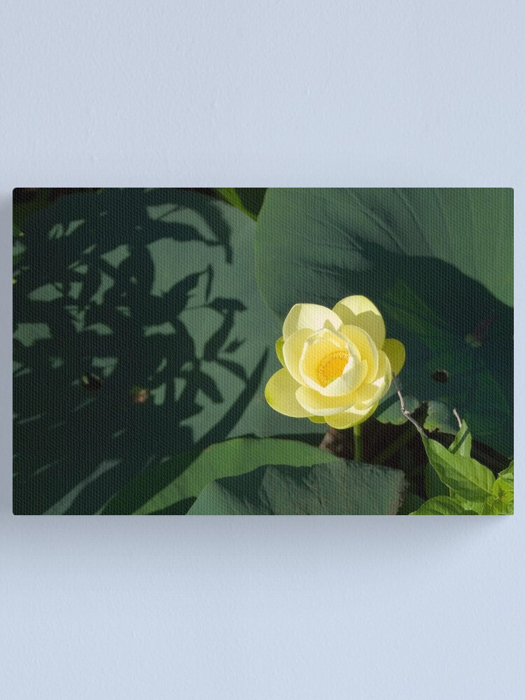 Alternate view of River Lotus Flower Canvas Print