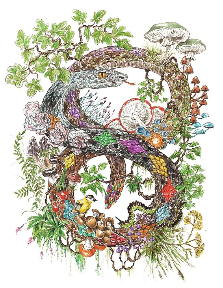 incorporation / Schlange / Pilze von MushroomOTD