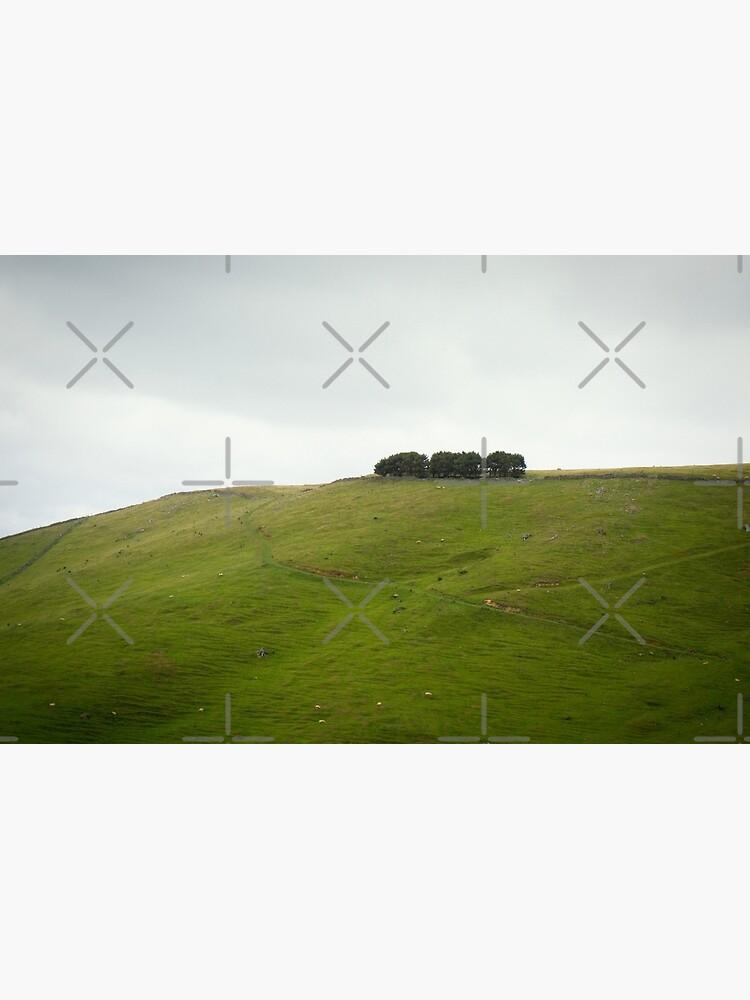 On the ridge by MelBrackstone
