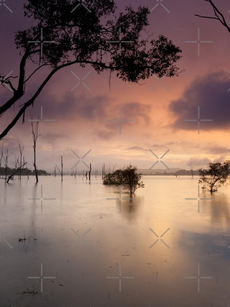 Flooded valley by MelBrackstone