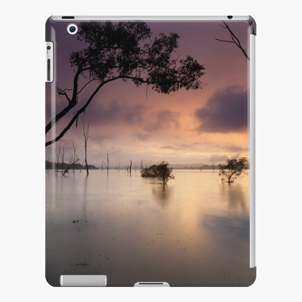 Flooded valley iPad Case & Skin