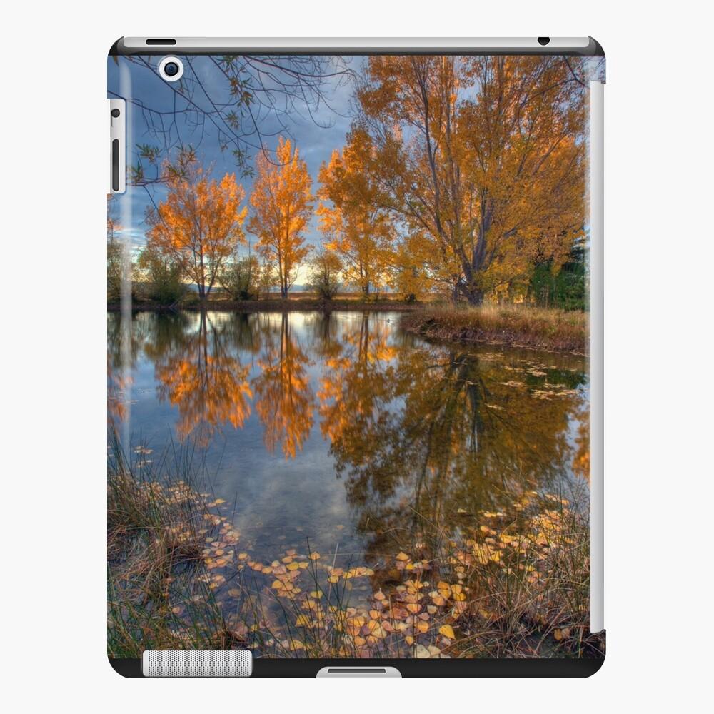 Autumn in Otago County iPad Case & Skin