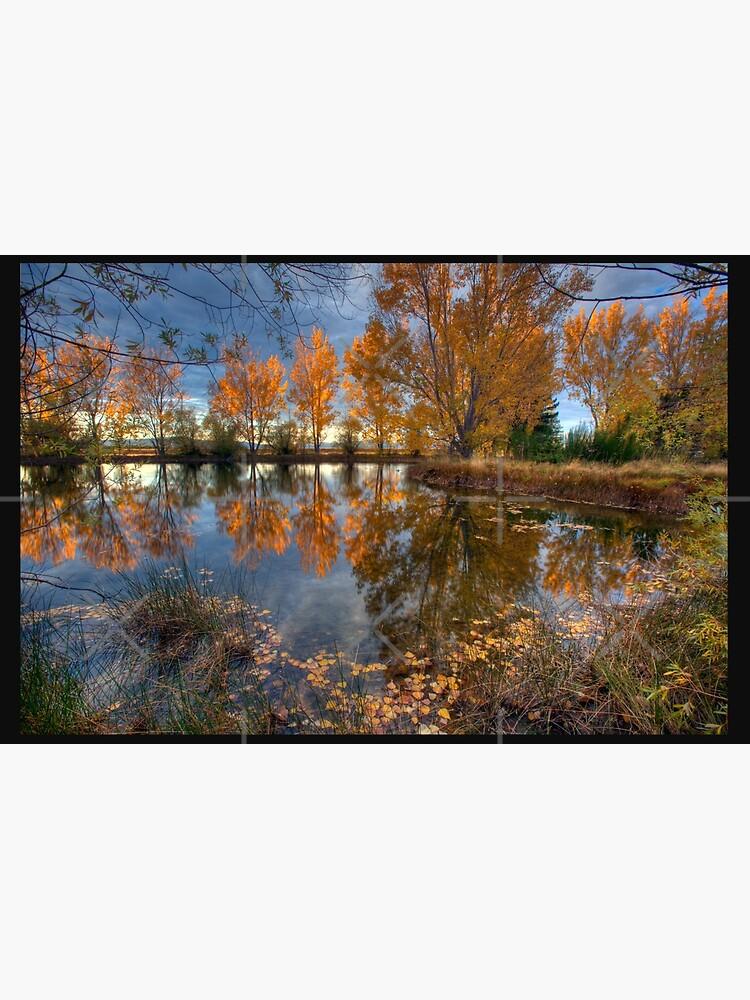Autumn in Otago County by MelBrackstone
