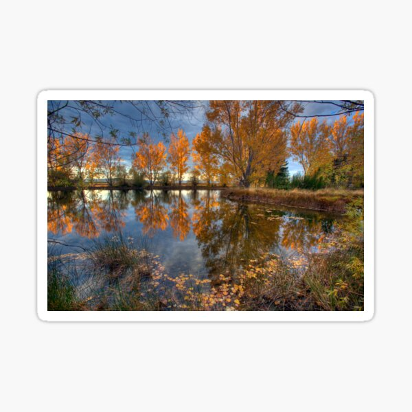 Autumn in Otago County Sticker