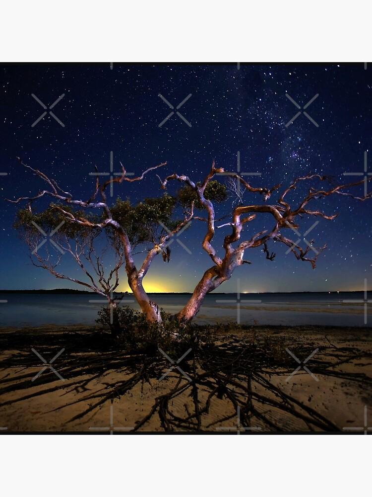 The tree by MelBrackstone