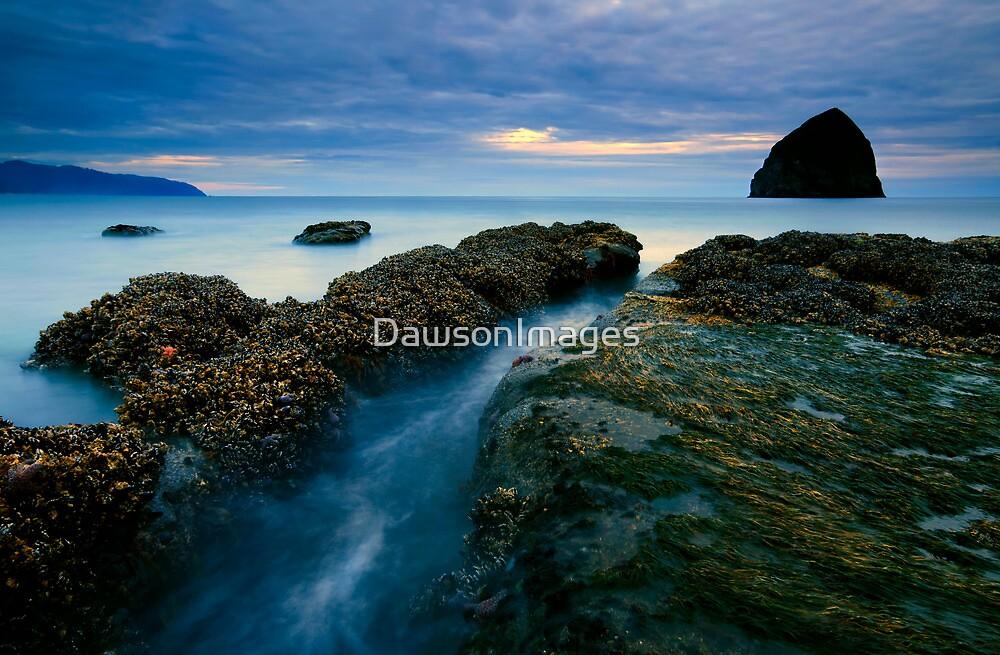 Dusk at  Cape Kiwanda  by DawsonImages