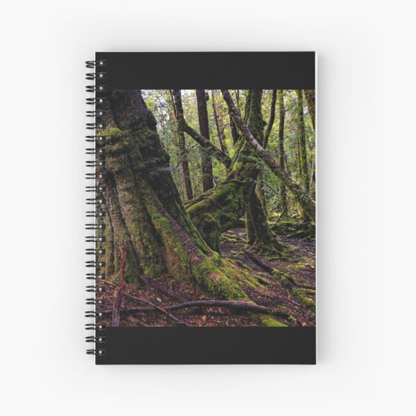 The clearest way to the Universe is through a forest wilderness Spiral Notebook