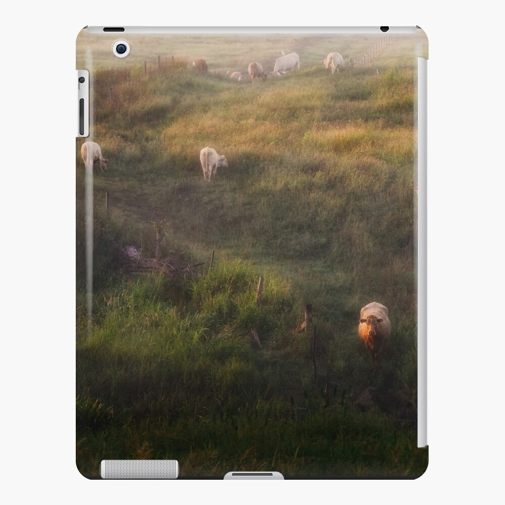 The cows iPad Case & Skin