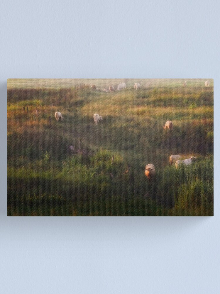 Alternate view of The cows Canvas Print