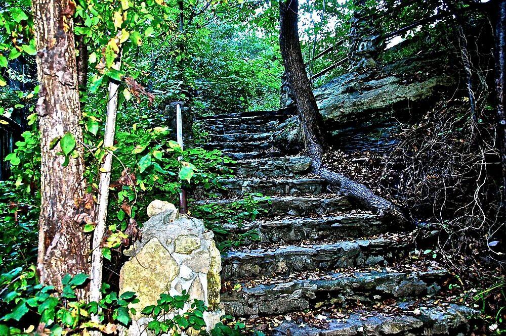 Rock stairway in a park by Ann Reece
