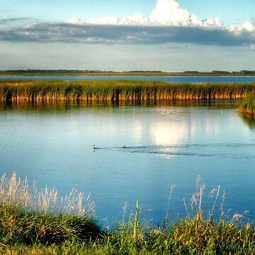 Sand Lake National Wildlife Refuge - South Dakota by kdxweaver