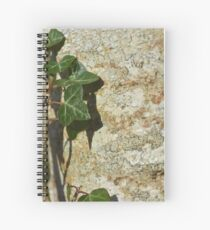Ivy in the Sun Spiral Notebook
