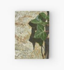 Ivy in the Sun Hardcover Journal
