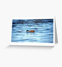 Duck BLUE Greeting Card