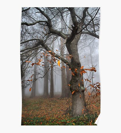 A few scant leaves left Poster