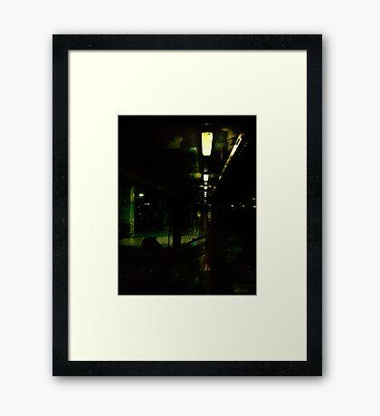 Lurking in Shadow Framed Print
