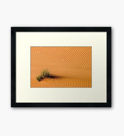 Desert Grass Framed Print
