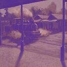 South Johnstone Cane Train by Cary McAulay