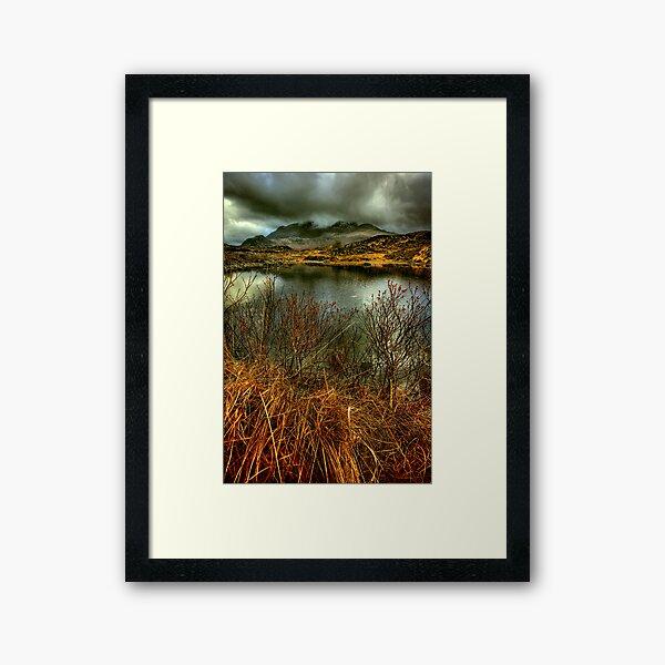Sligachan Grasses Framed Art Print