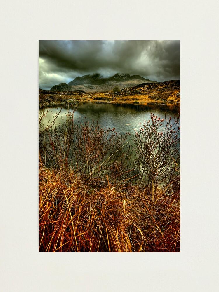 Alternate view of Sligachan Grasses Photographic Print