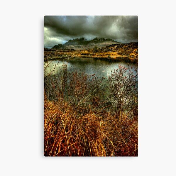 Sligachan Grasses Canvas Print