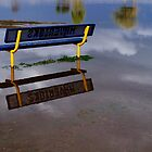 Lonely Bench Sitting In The Wet Sky by dherbsta