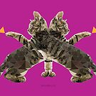 Butterfly Cat by newmindflow