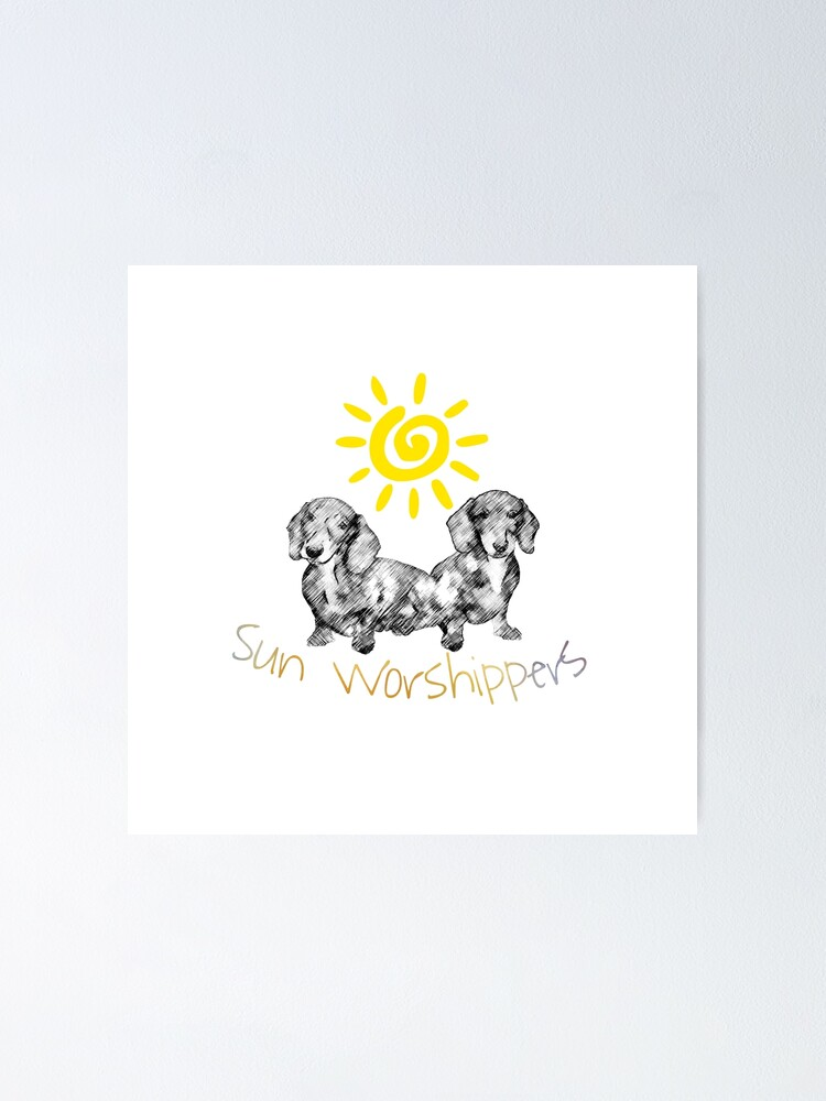 Alternate view of Dachshunds Sun Worshippers Poster