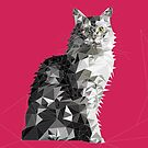 Geometric Maine Coon by newmindflow